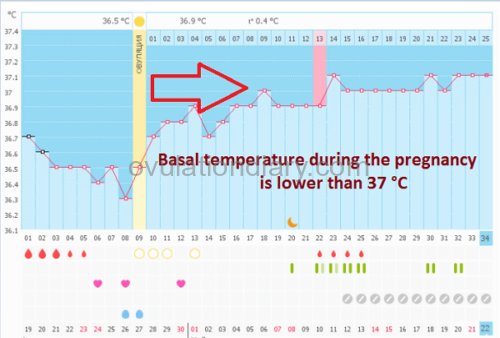 Basal temperature during the pregnancy is lower than 37 Celsius degrees but the difference between the phases is 0.4 °C or 0.72 °F. Normal progressing pregnancy.