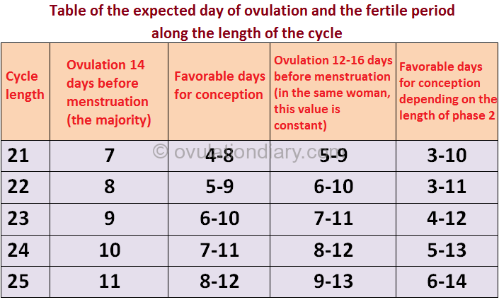 Table of the expected day of ovulation and the fertile period along the length of the cycle