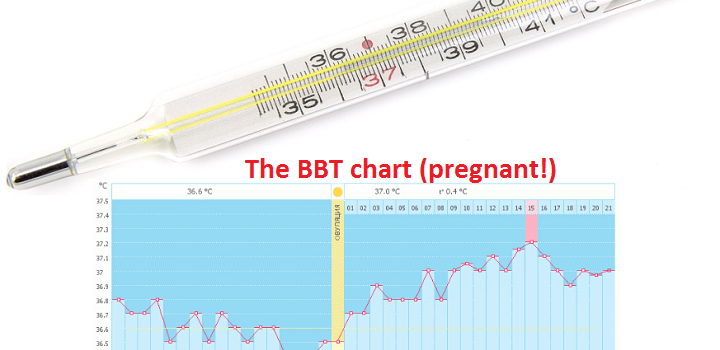 The basal body temperature BBT with pregnancy. How to measure