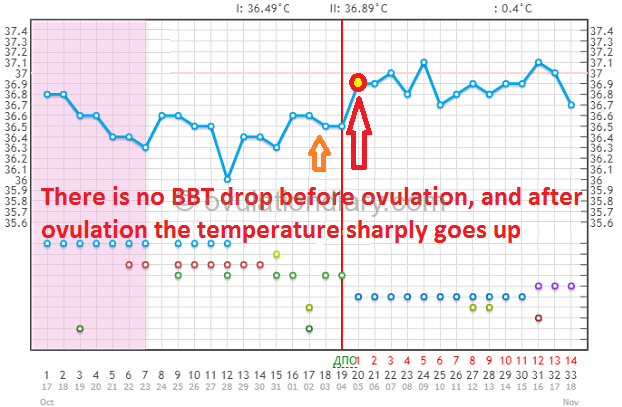 There is no BBT drop before ovulation, and after ovulation the temperature sharply goes up