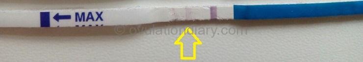 BFP Positive pregnancy test