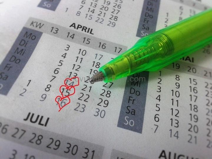 Calculating ovulation date based on the menstrual calendar (regular cycles) allows you to determine three most fertile days for conception