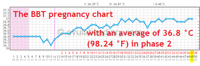 The BBT pregnancy chart with an average of 36.8 °C (98.24 °F) in phase 2