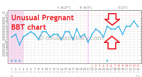 Unusual Pregnant BBT chart with a small temperature difference